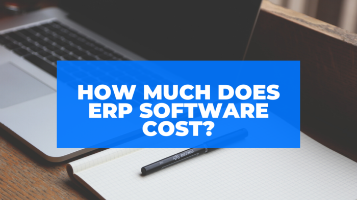 How much does ERP Software cost?